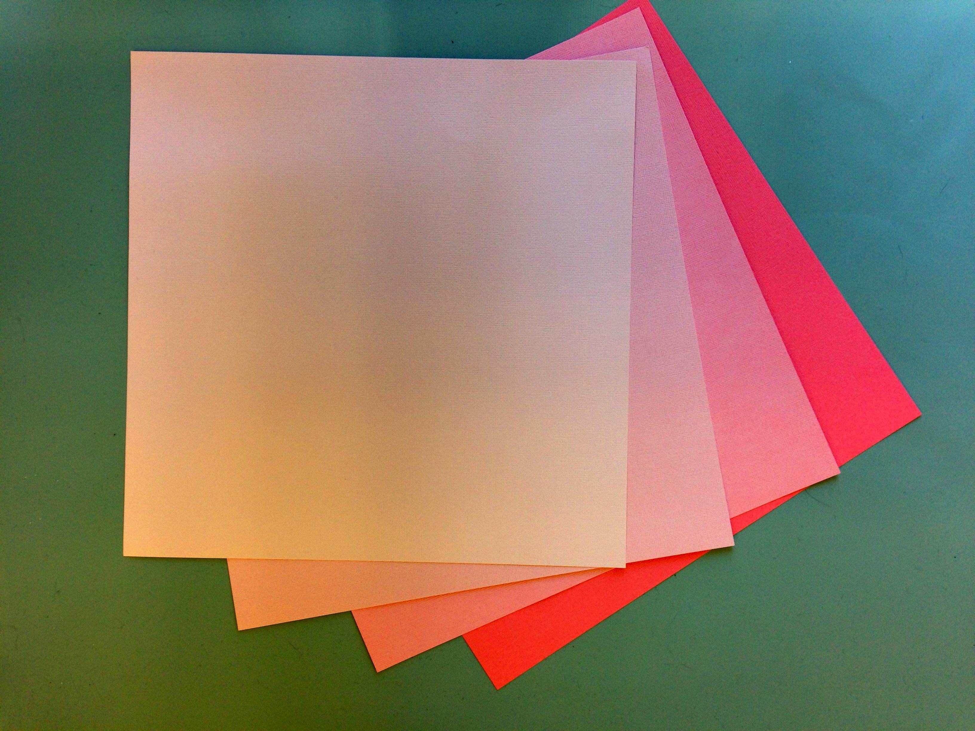 Light Pink Paper Flower Kit