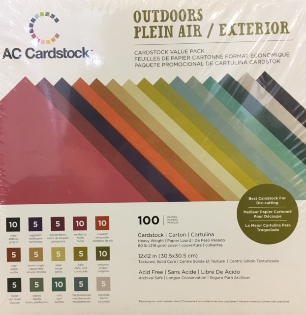 100 12x12 Textured Cardstock Pack OD