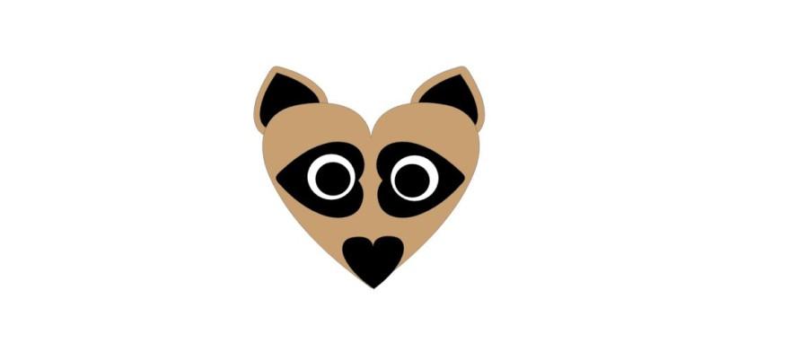 Raccoon Valentine Kit Qty 10